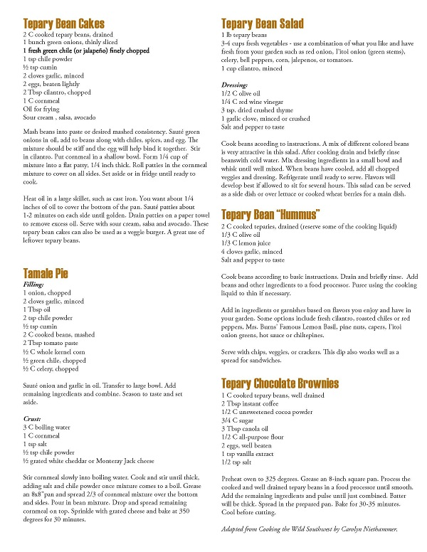 Tepary Bean Recipe Handout Page 2